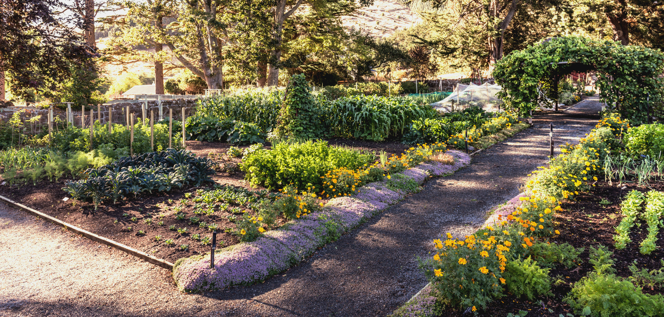 The Potager Garden at Otahuna Lodge