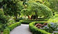 The Dutch Garden.